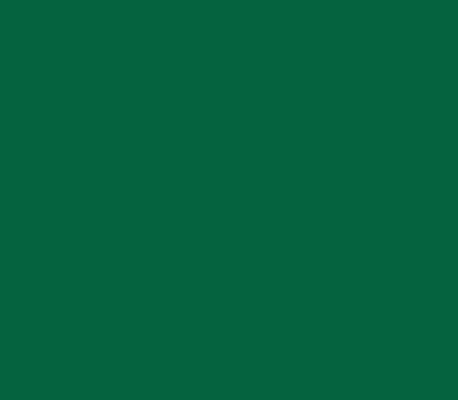 imic inc official logo.